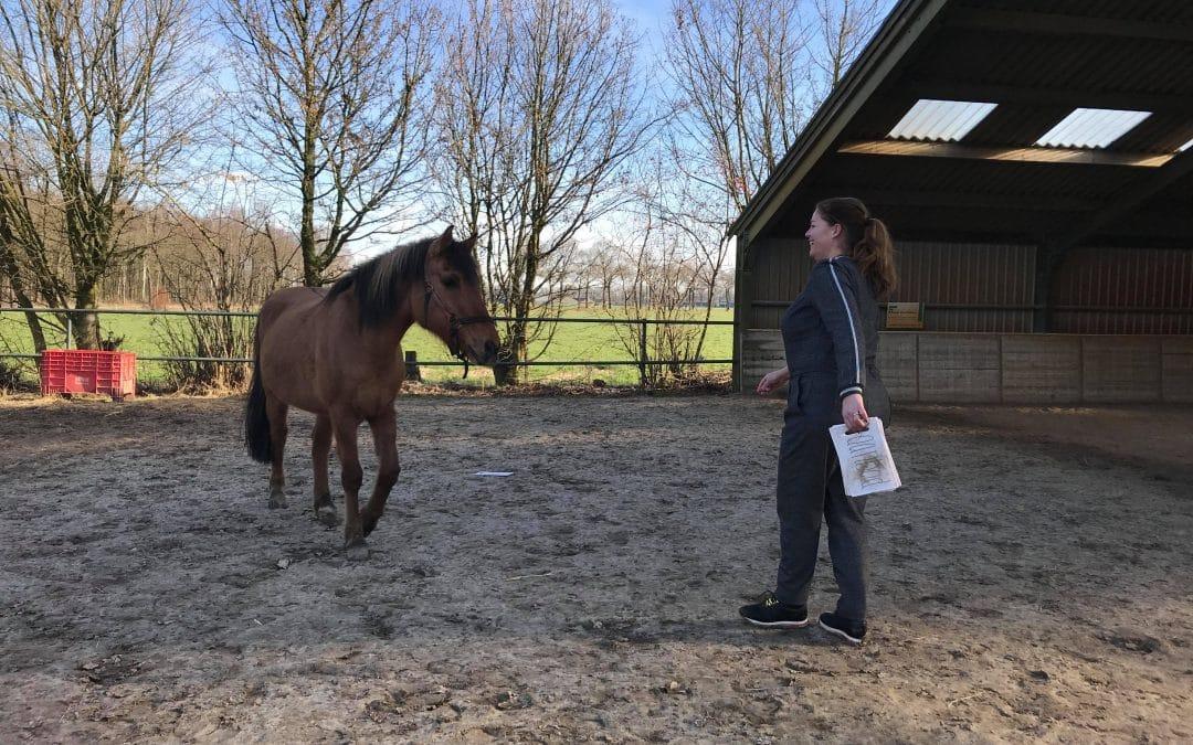Toen het paard in haar teen beet…