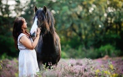 #Toes-blog – Het proces bij het kopen van mijn paard Toes (+ ondernemerschapslessen)